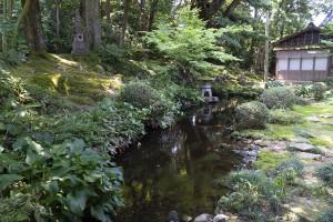清掃前の庭園