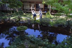 だいぶすっきりした池の周り